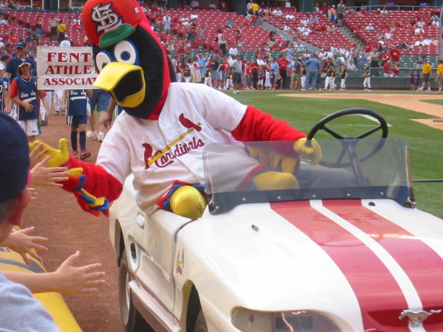 Fred Bird...yes, he's old enough to drive.  In fact, he's old enough to be an AARP member