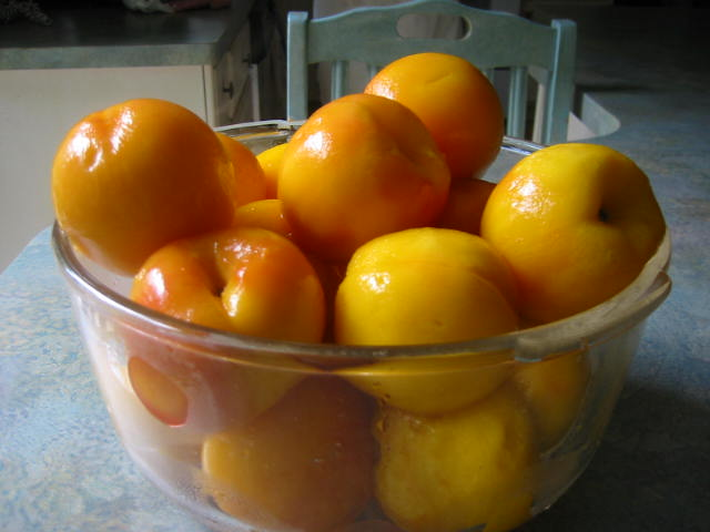 Freshly peeled and blanched peaches--ready for cobbler